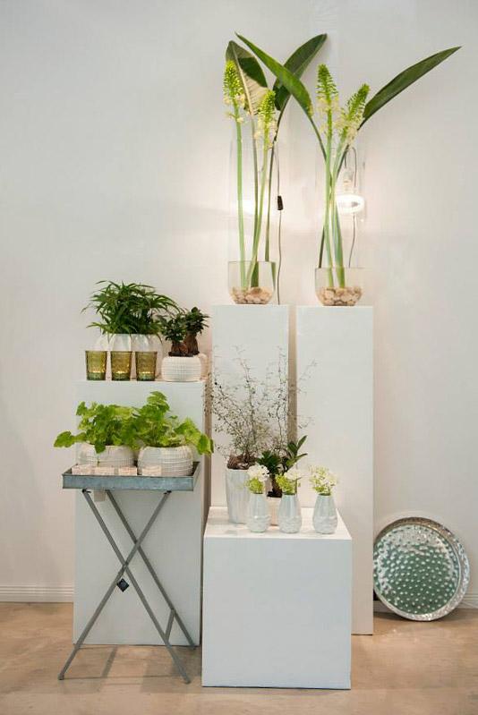 Horeis Florist Studio / Pop Up Store